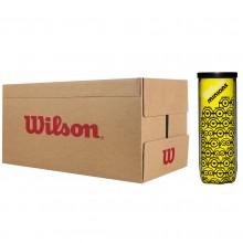 CARTON DE 24 TUBES DE 3 BALLES WILSON MINIONS CHAMPIONSHIP
